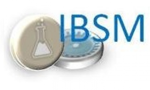 logo IBSM