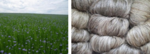 Le lin, un atout pour les éco-matériaux