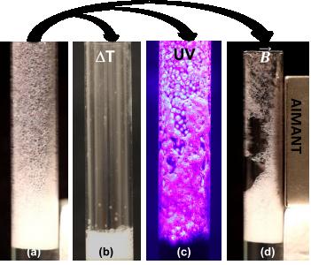 Mousses stimulées, UV, champs magnétiques