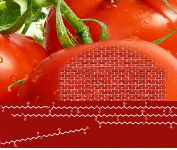 la peau du fruit / les briques elementaires du polymere de cutine / Les molecules esterifiées