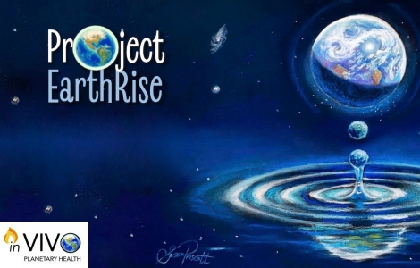 inVIVO Project Earthrise