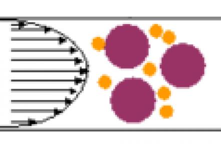 chromatographie liquide