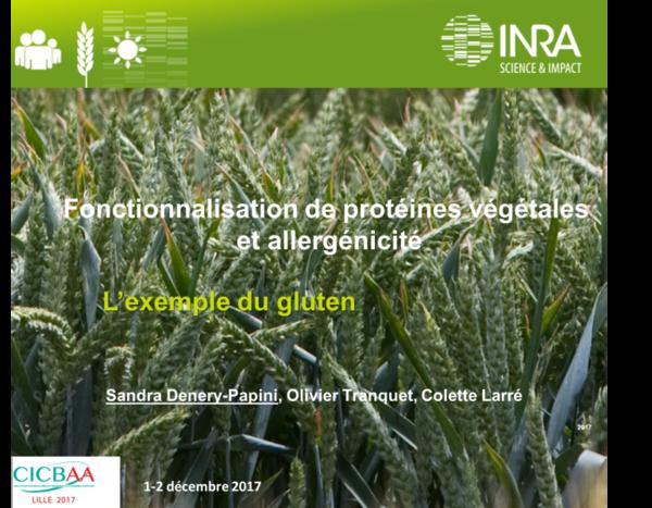Fonctionalisation de protéines végétales et allergénicité