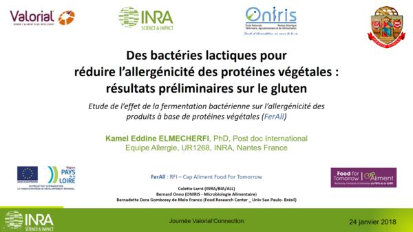 Desbactéries lactiquespour réduirel'allergénicitédesprotéines végétales: résultats préliminaires sur legluten