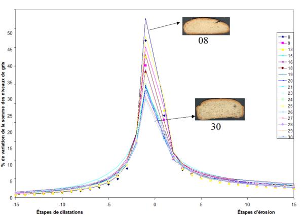 courbes de texture granulométrique en niveau de gris