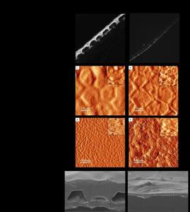 Observations microscopiques