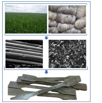 Flax fibres