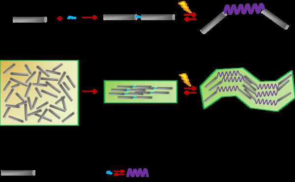 MolecularMachine-CNC
