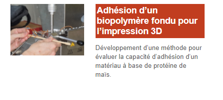 adhesion-polymere