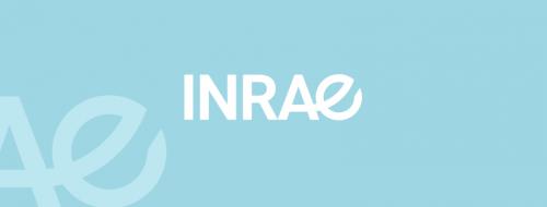 Naissance d'INRAE au 1er janvier 2020