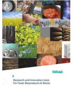 Rapport Recherche et Innovation TRANSFORM