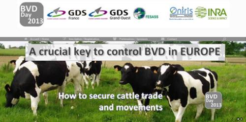 Sécurisation des mouvements d'animaux par rapport aux risques sanitaires pour la BVD