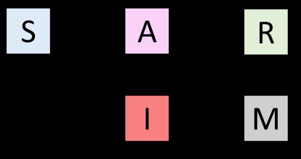 Schéma conceptuel d'un modèle SAIRM