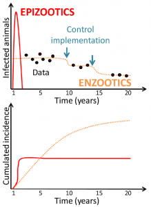 Epidemic infectious diseases (red) cause significant losses over short periods of time, while endemic infectious diseases (orange) persist and can result in significant cumulative incidence. Data collection is necessary to assess the impact of diseases and evaluate the effectiveness of control strategies.