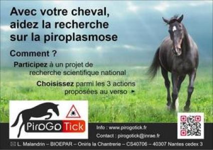 Lancement PiroGoTick