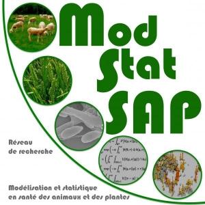 ModStatSAPS Logo
