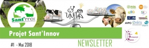 Newsletter Sant'innov 2