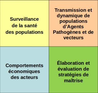 Determinism of diseases and vector dynamics