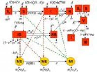 modeliser_pour_comprendre_et_predire_la_dynamique_des_populations_de_vecteurs_et_des_maladies_vectorielles_animales