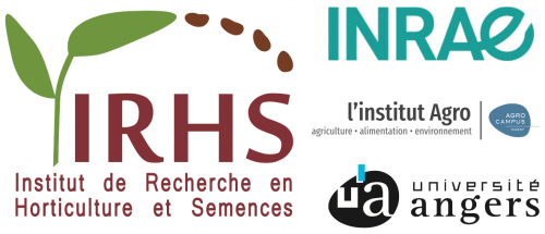Logo IRHS