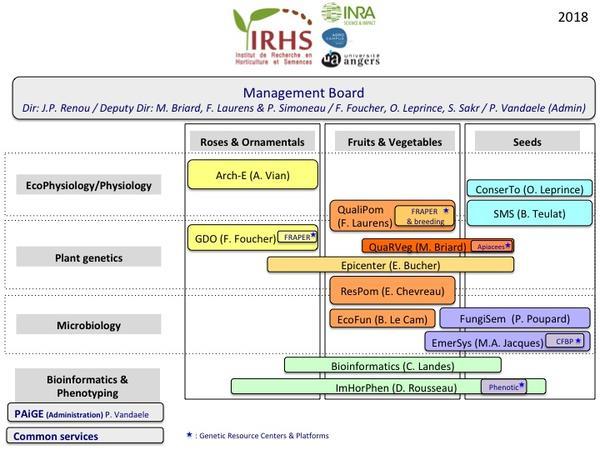 Organigramme IRHS 2018