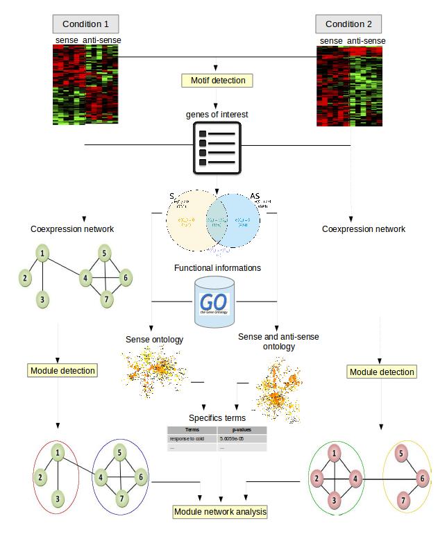 Bioinfo_regulation