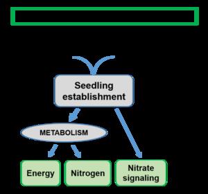 SMS Figure 2