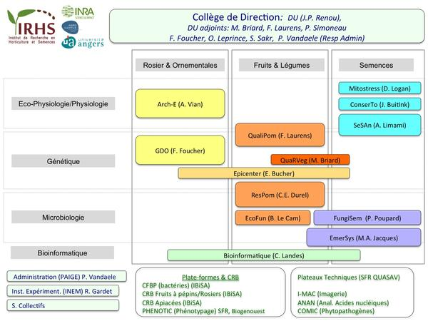 Organigramme de l'IRHS