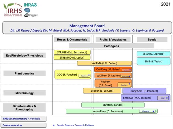 Organogramme IRHS 2021a