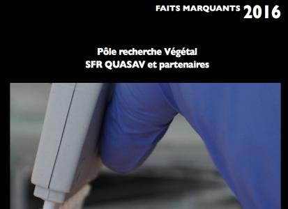 Rapport 2016 SFR Quasav