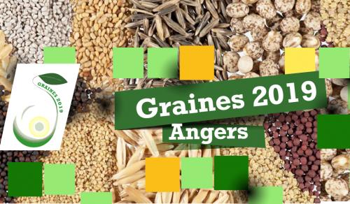 Graines 2019
