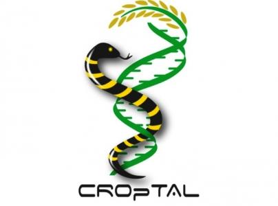 logo Croptal