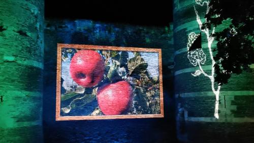 Rêveries Végétales à Angers avec, ici, la pomme Ariane