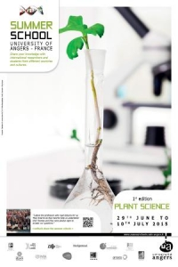 Summer school plant science