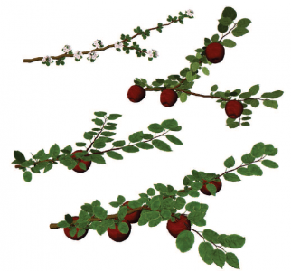 Simulated apple carrier branches