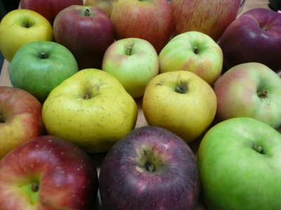 Gestion des ressources génétiques fruitières