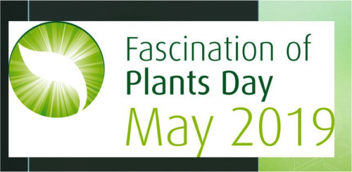 Fascination Plants Day 2019