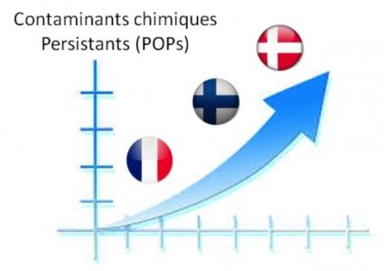 Les niveaux de concentrations des contaminants chimiques recherchés (polluants organiques persistants de type dioxines, polychlorobiphényles, retardateurs de flamme polybromés) apparaissent globalement inférieurs dans les prélèvements de lait maternel collectés chez des mères Françaises par rapport à ceux observés dans des prélèvements issus de mères scandinaves. Les proportions relatives de ces différents contaminants diffèrent d'un pays à l'autre, avec notamment un rapport PCB/dioxines plus élevé en France.
