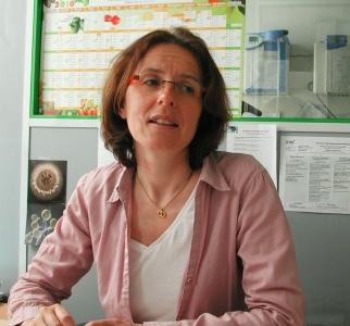 Le Dréan Gwenola