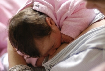 Allaitement d'un nourrisson au sein.