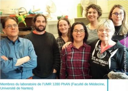 Membres de l'UMR PhAN