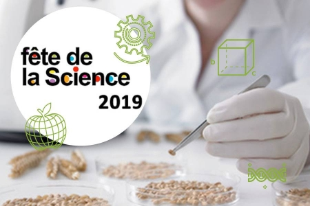 FDS2019