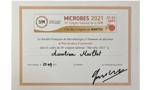 Prix de thèse d'Aurélien Maillet