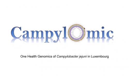 Campylomic