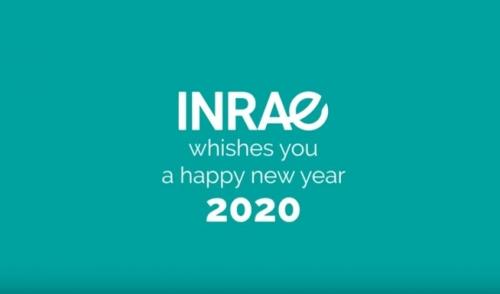 Best Wishes 2020